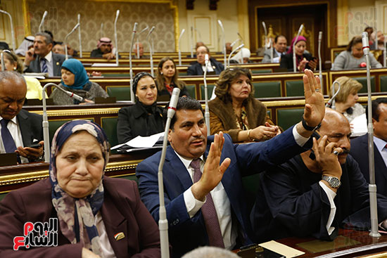 مجلس النواب (50)