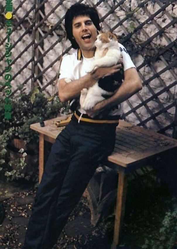 فريدى ميركورى مع قططه  (2)