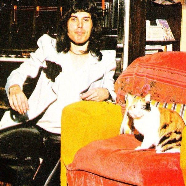 فريدى ميركورى مع قططه  (5)