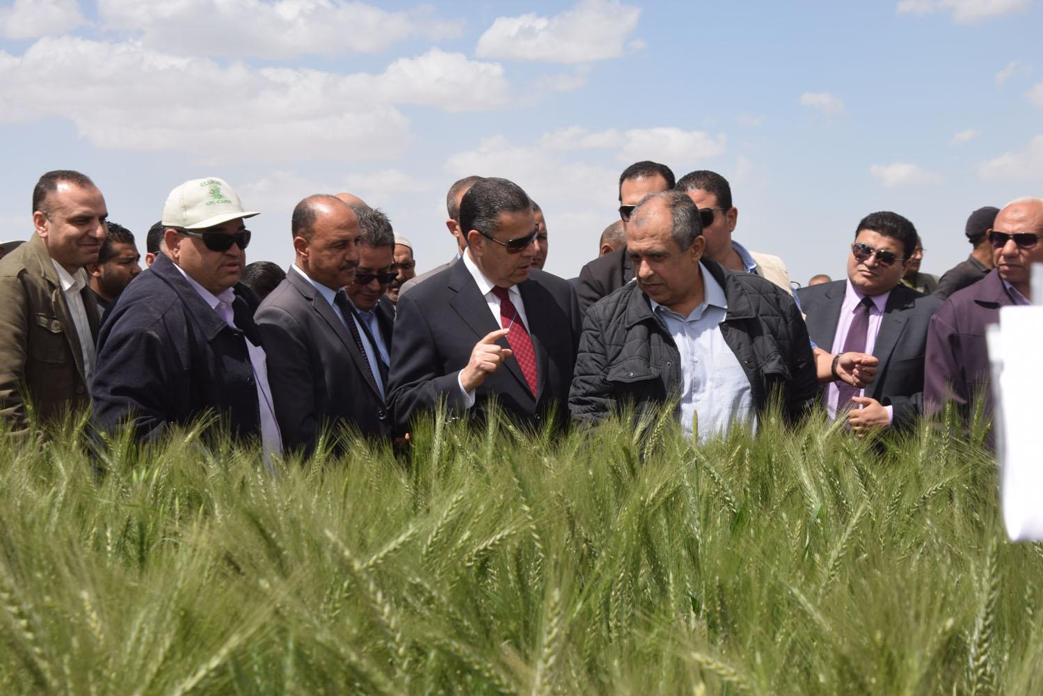 جولة وزير الزراعة ومحافظ بنى سويف بمحطة البحوث بسدس (3)