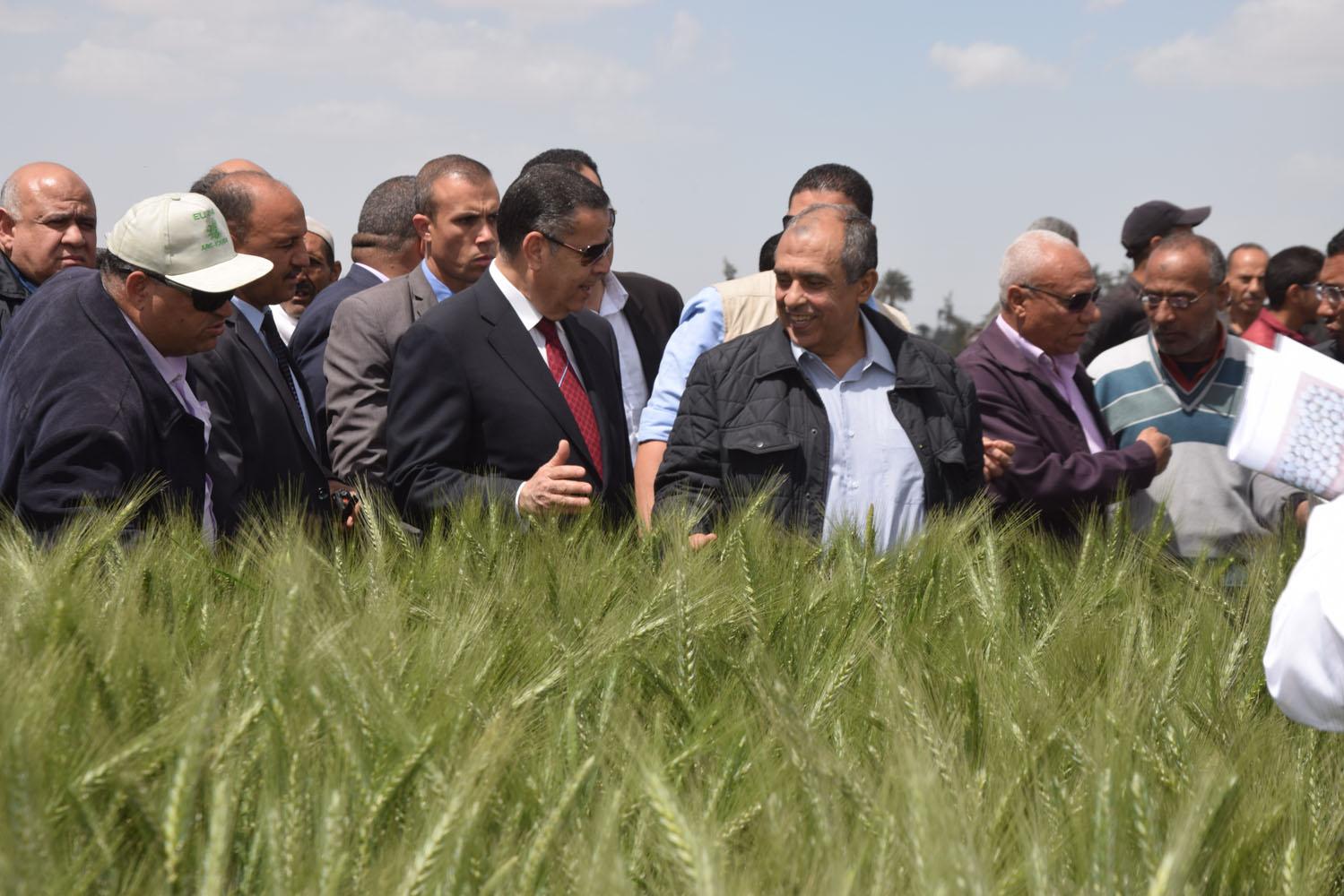 جولة وزير الزراعة ومحافظ بنى سويف بمحطة البحوث بسدس (2)