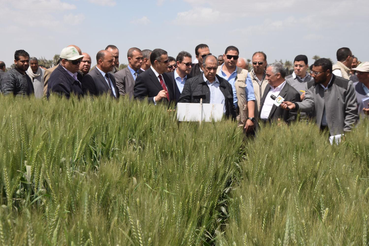 جولة وزير الزراعة ومحافظ بنى سويف بمحطة البحوث بسدس (1)