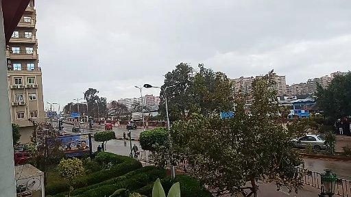 امطار ورياح بالقليوبية  (1)