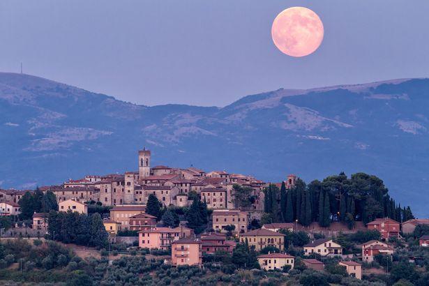 القمر الوردى