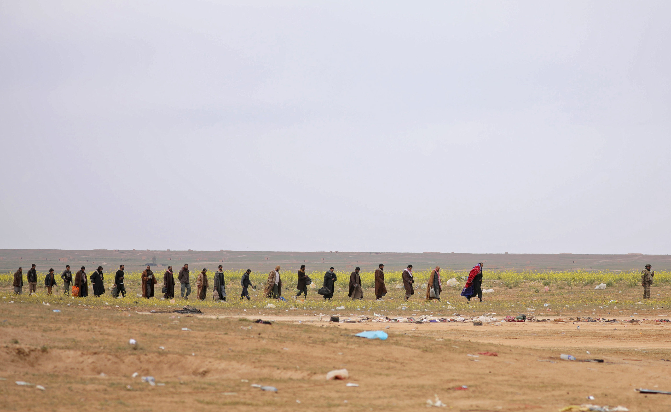 سوريا (2)