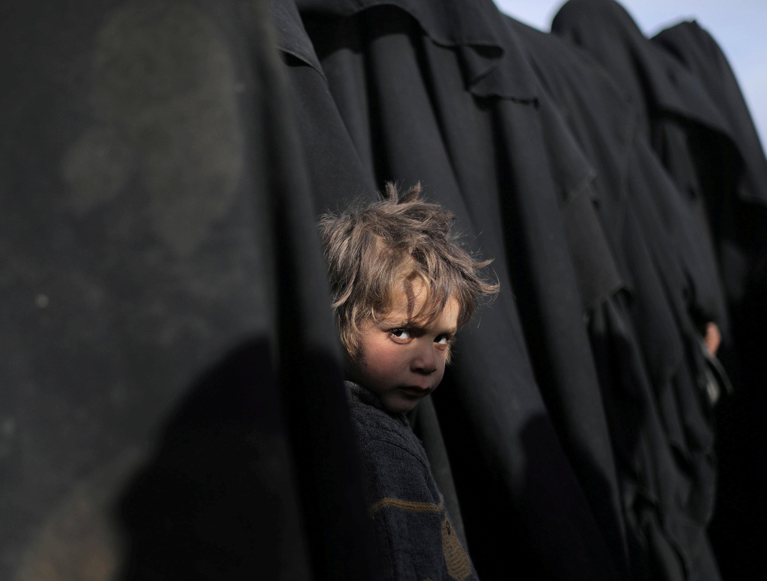 سوريا (8)