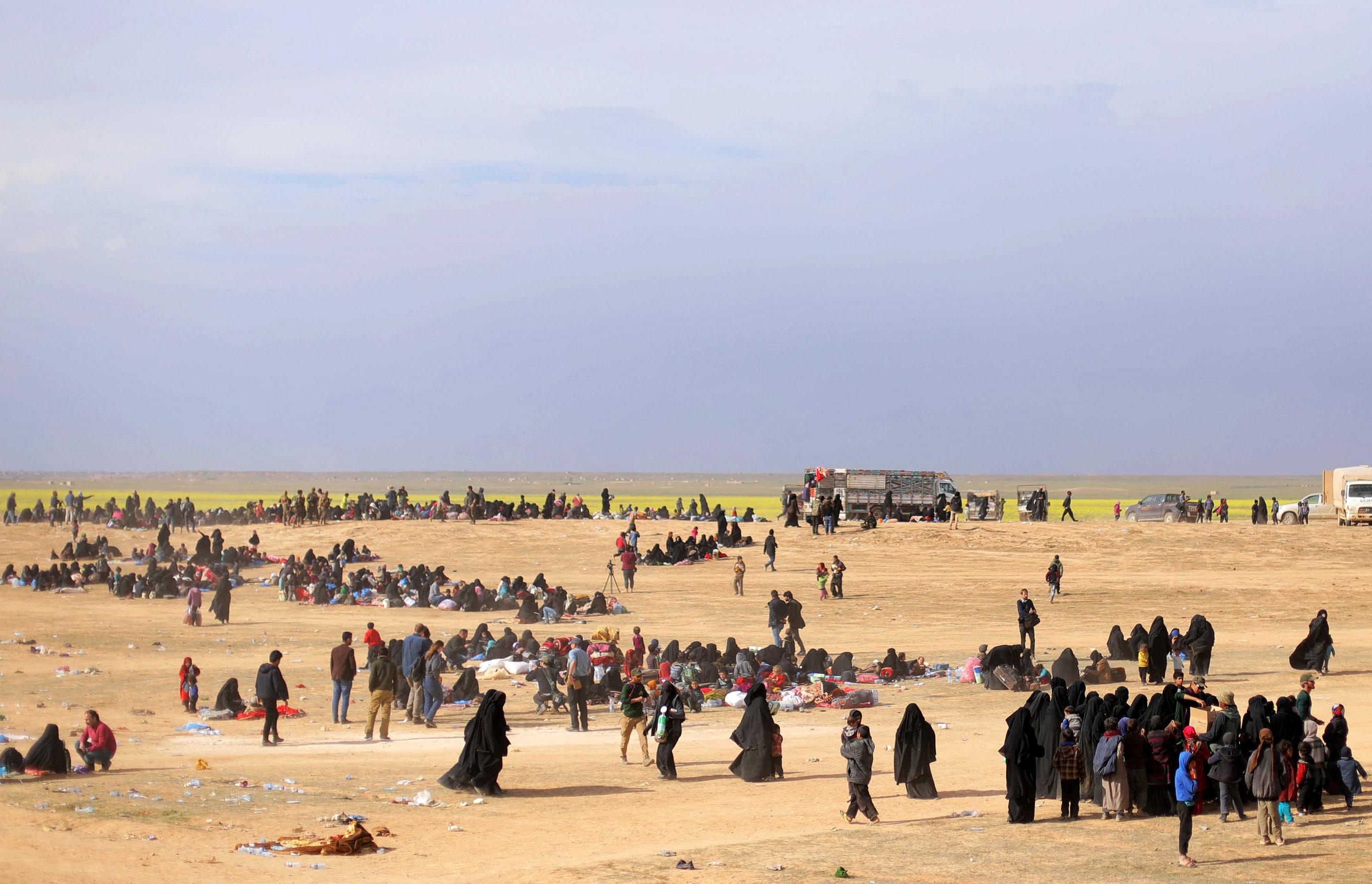 سوريا (5)