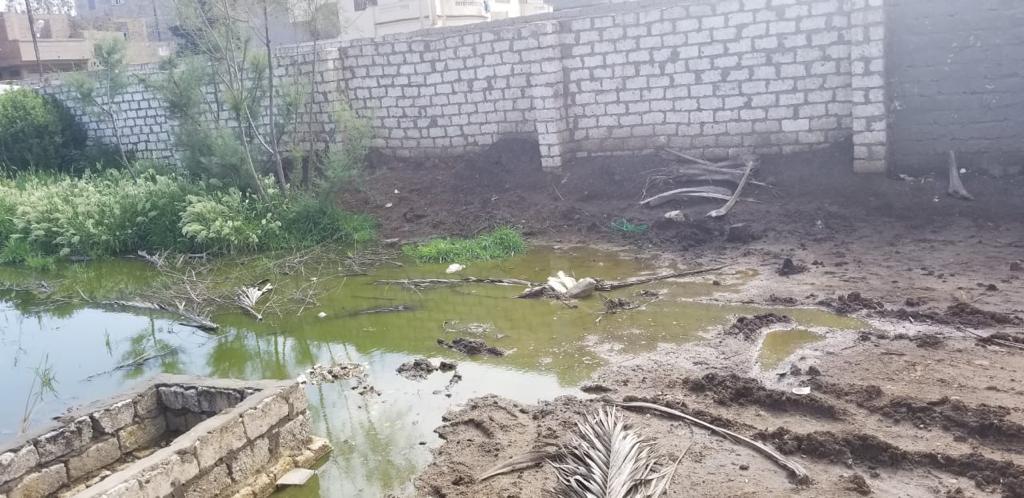 غرق شوارع قرية الشهيدى فى المحلة بالصرف الصحى (4)