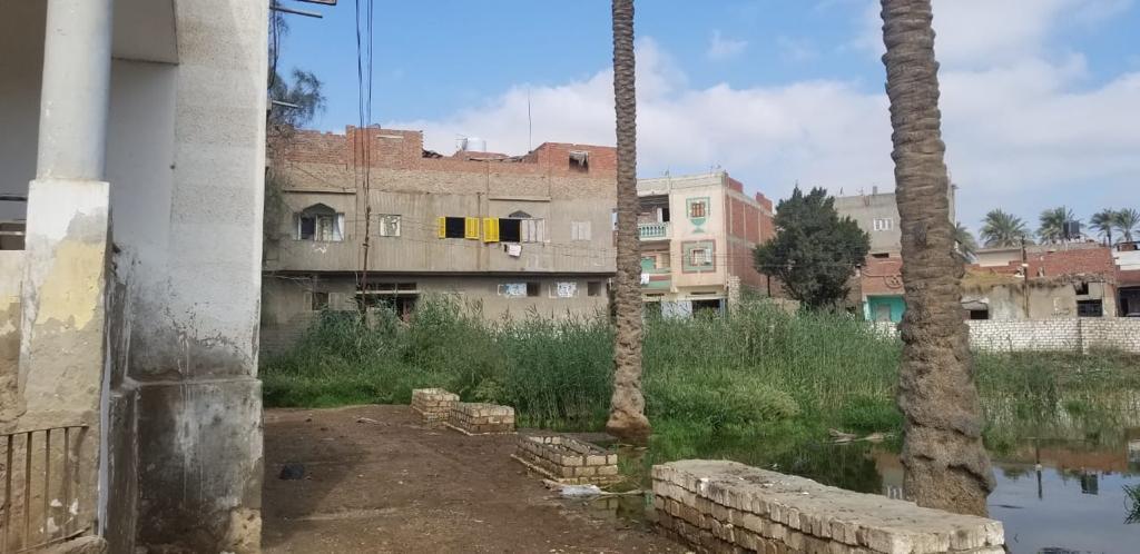 غرق شوارع قرية الشهيدى فى المحلة بالصرف الصحى (3)