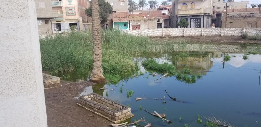 غرق شوارع قرية الشهيدى فى المحلة بالصرف الصحى (2)