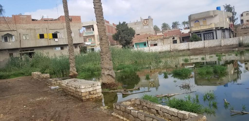 غرق شوارع قرية الشهيدى فى المحلة بالصرف الصحى (1)
