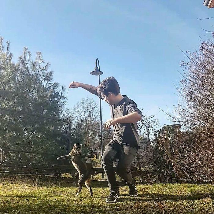 رقص القطط (11)