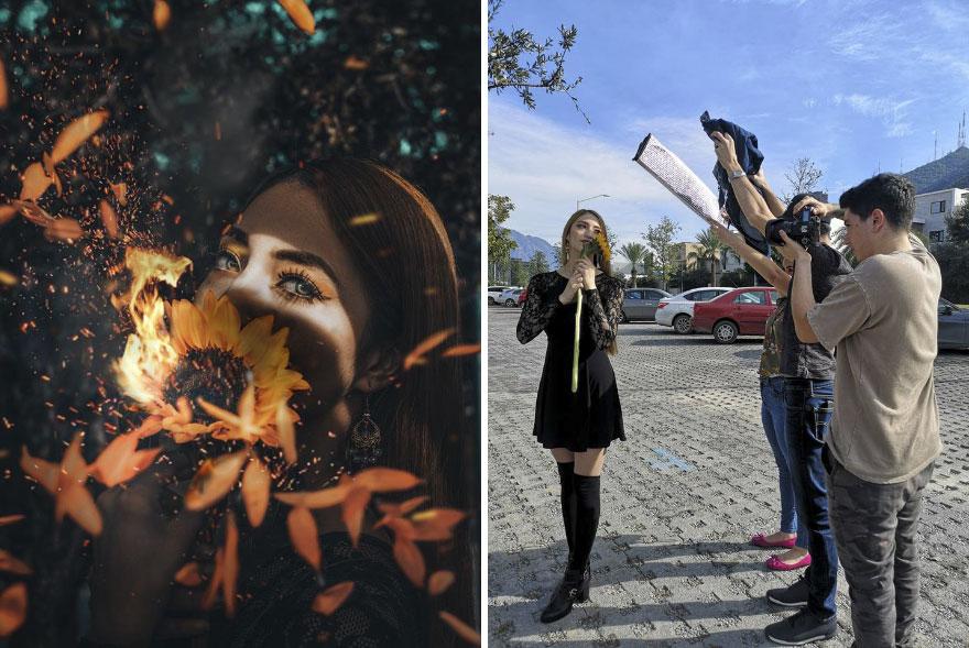 استخدام الأشجار فى التصوير الفوتوغرافى