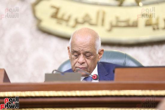 الجلسه العامه بمجلس النواب (9)