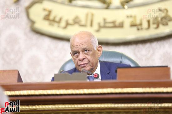 الجلسه العامه بمجلس النواب (5)