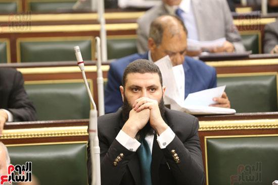 الجلسه العامه بمجلس النواب (6)