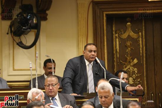 الجلسه العامه بمجلس النواب (13)