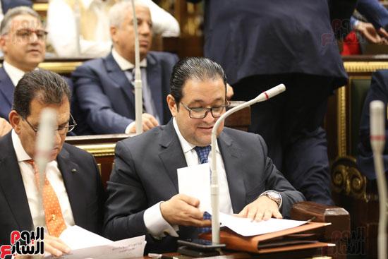 الجلسه العامه بمجلس النواب (10)