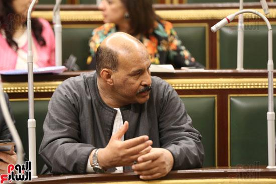 الجلسه العامه بمجلس النواب (3)