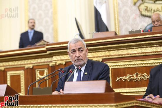 الجلسه العامه بمجلس النواب (11)