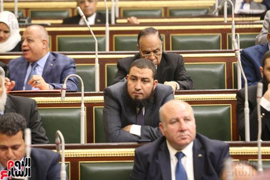 الجلسه العامه بمجلس النواب (7)