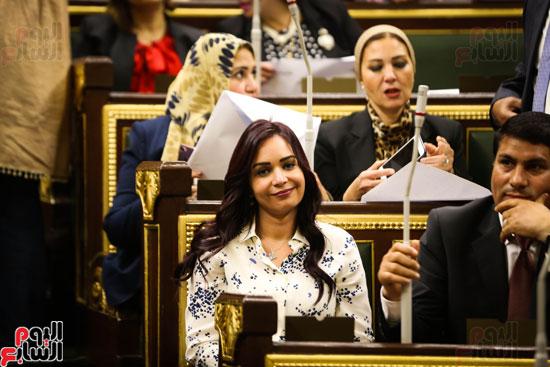 الجلسه العامه بمجلس النواب (12)