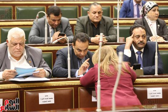 الجلسه العامه بمجلس النواب (4)