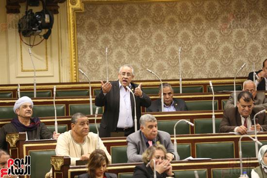 الجلسه العامه بمجلس النواب (15)