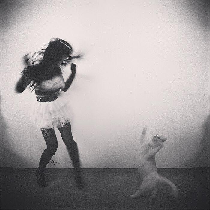 رقص القطط (8)