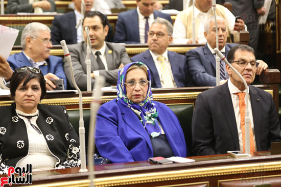 الجلسه العامه بمجلس النواب (2)