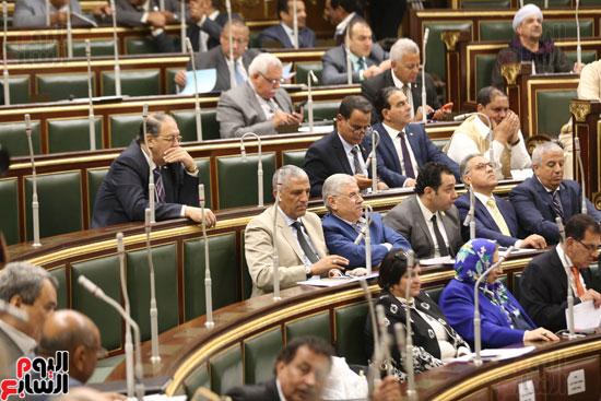 الجلسه العامه بمجلس النواب (14)