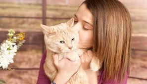 امراض تنقلها القطط