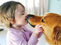 امراض تنقلها الكلاب