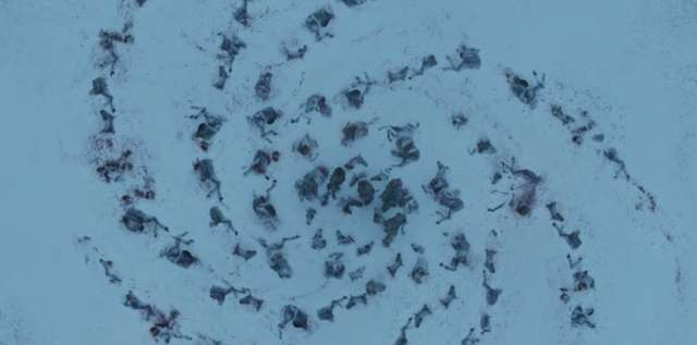رسمة اطراف الخيول فى الموسم الثالث