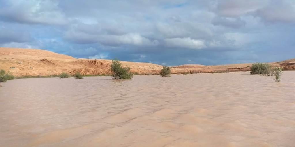 زيادة المساحات الخضراء نتيجة تزايد سقوط الامطار (3)