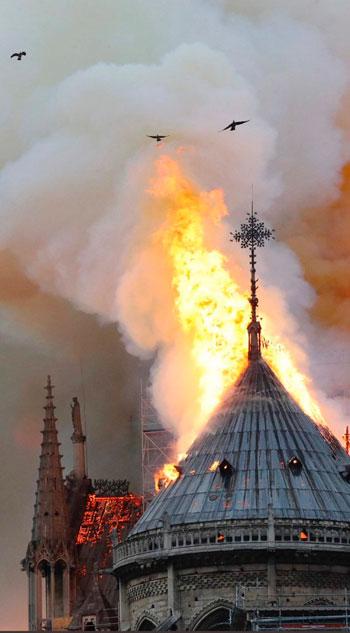حريق كاتدرائية نوتردام (24)