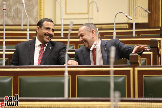 مجلس النواب (38)