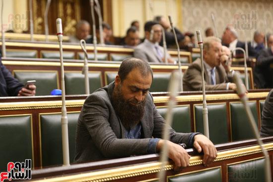 مجلس النواب (42)