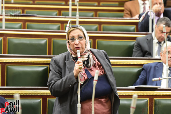 مجلس النواب (28)