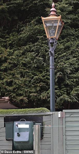 بريطانى يبتكر نظام لإضاءة أعمدة الإنارة من نفايات الكلاب (4)