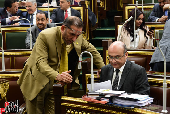 مجلس النواب (17)