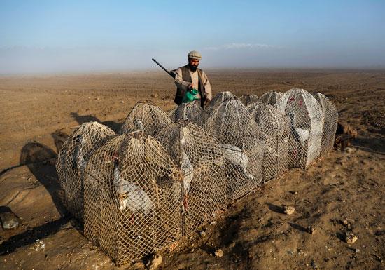 حياة صائد الطيور الأفغانى فى حقل باجرام  (2)