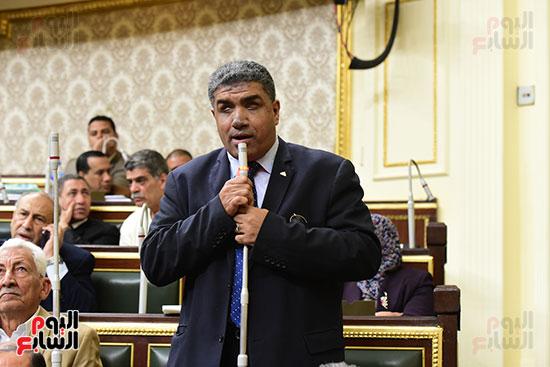 مجلس النواب يصوت على التعديلات الدستورية (28)