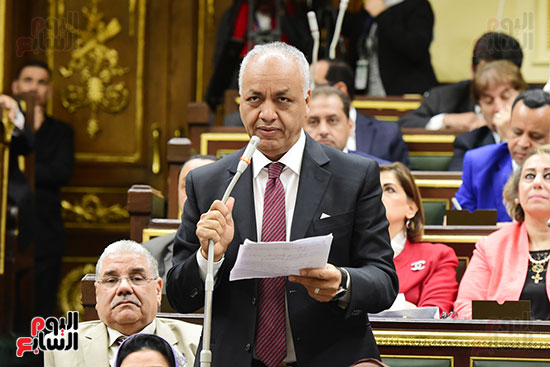 مجلس النواب يصوت على التعديلات الدستورية (24)