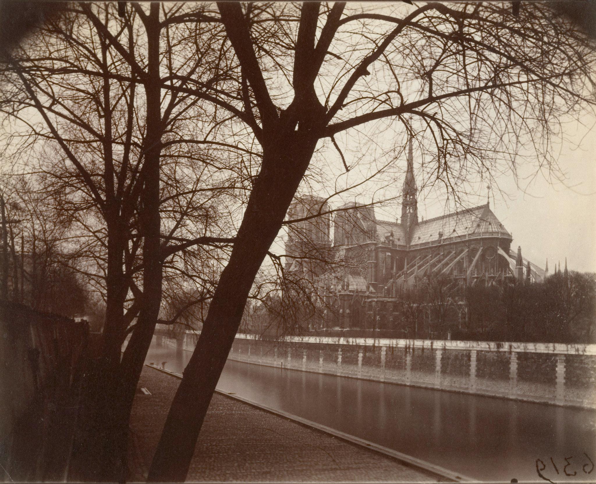 الكاتدرائية (4)