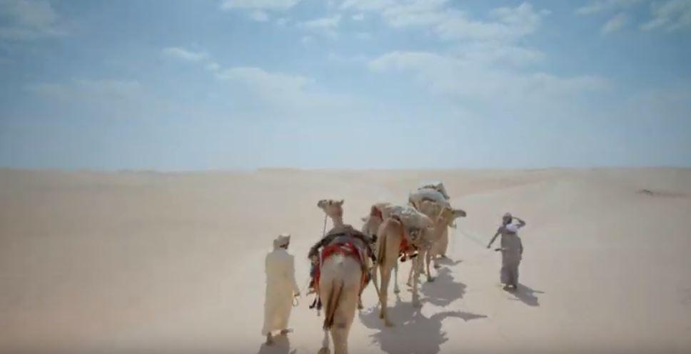 تقاليد وعادات الإمارات
