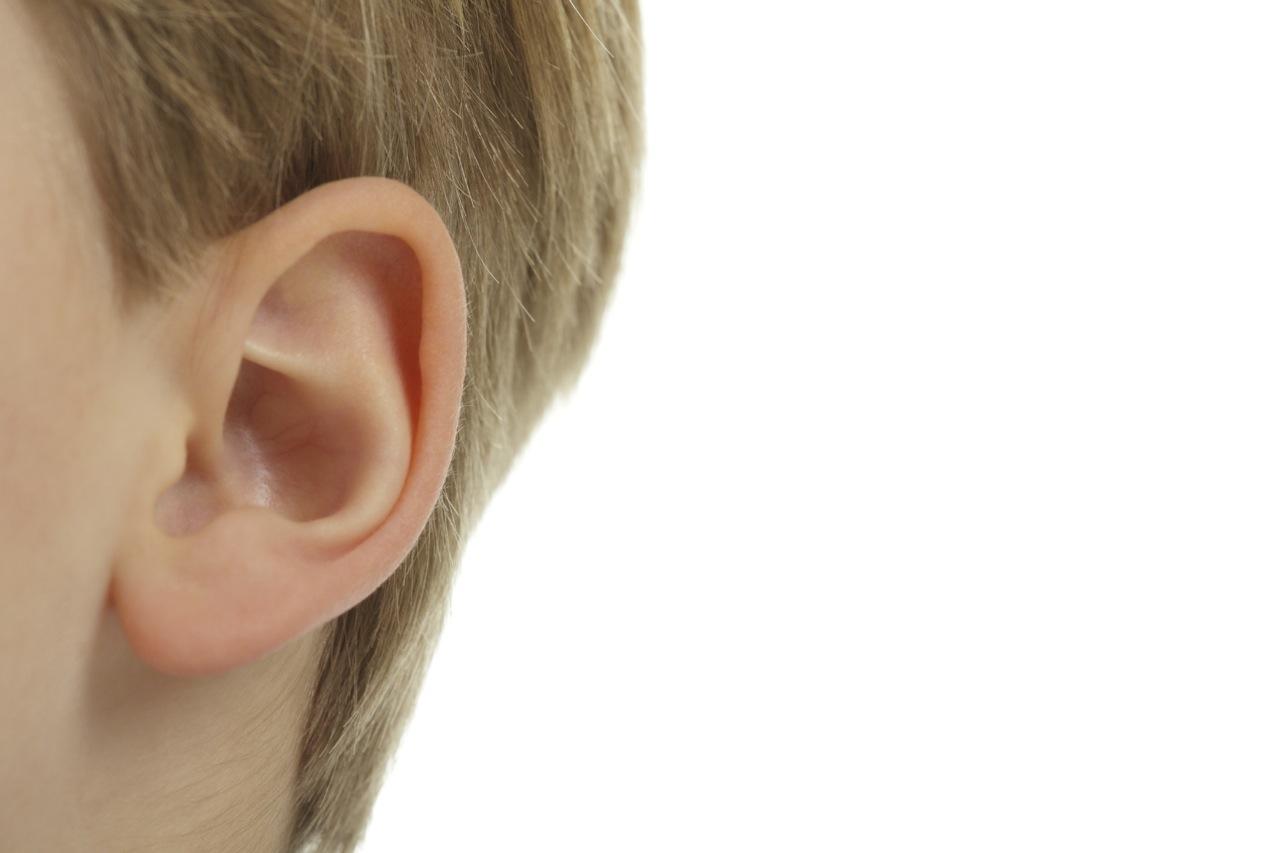 الاذن الصمغية