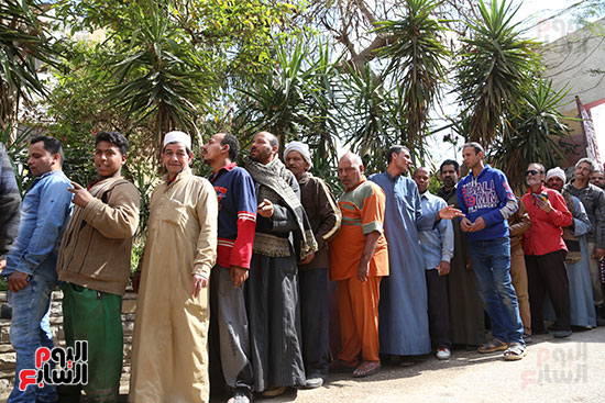 اللجان الانتخابية بالقاهرة (15)