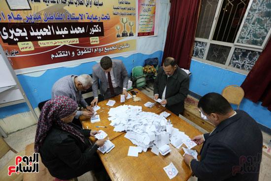 فرز اصوات الاستفتاء على التعديلات الدستورية (13)