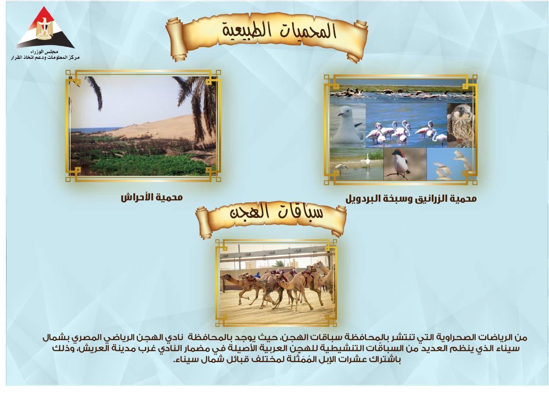 العيد القومى لمحافظة شمال سيناء (4)